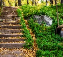 The stairs by PhotosByHealy