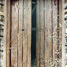 'Hay-Loft Door' - Exterior Trompe L'oeil Painting by Eyes-of-Sol