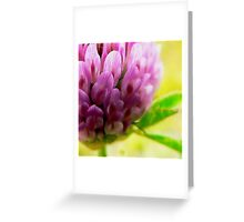 Posies Are Very Pretty Greeting Card
