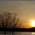 Candlewood Lake  by dazaria