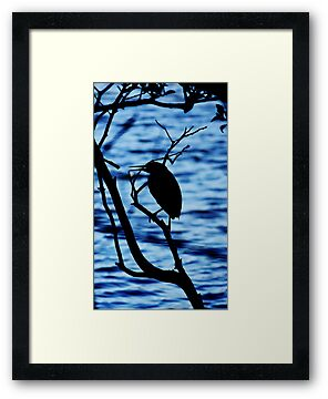 The Night Heron by Rookwood Studio ©