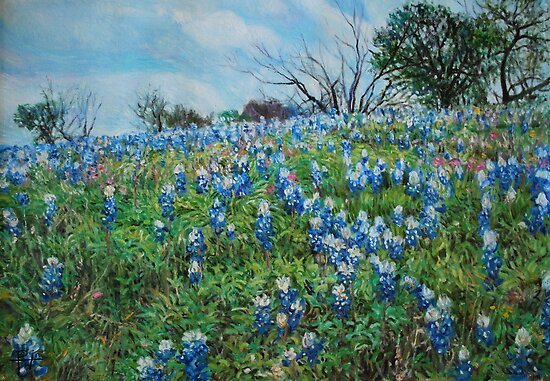Bluebonnets by HDPotwin