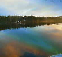 Rainbow Reflection by Gail Bridger