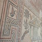 Mosaics at Mt Nebo by Mark Prior