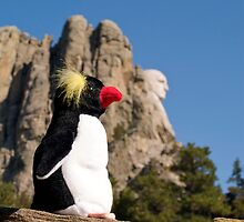 Presidential Penguin at Mount Rushmore by Alex Cassels