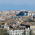 Rooftops of Rome by ljroberts