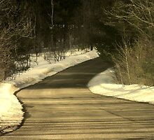 """Aspen Road-Gaylord Michigan by J&M Photography"