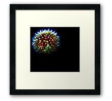 Dandelion Firework Framed Print