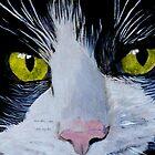 Tuxedo Cat by Yvonne Carter