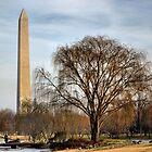 D.C. Vantage Point by LukeEverett
