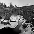 Feishie Bridge by donnnnnny