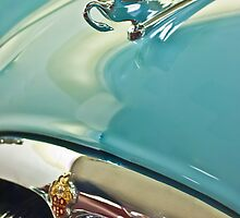 "1954 Packard Cavalier Sedan ""Cormorant"" Hood Ornament by Jill Reger"