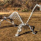 Bones of Steel (Stamford, Texas) by Terence Russell