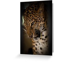 Grr Greeting Card