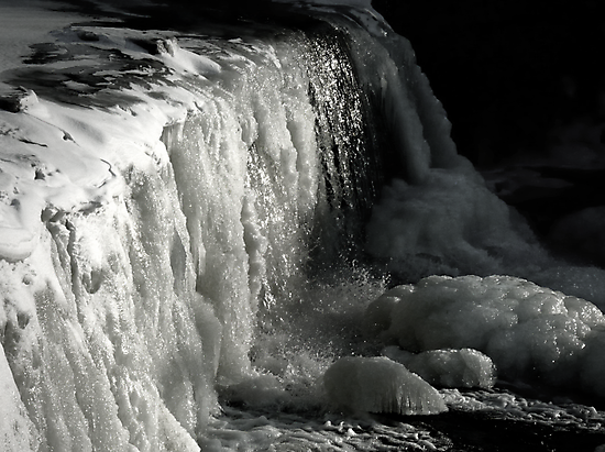 Ice Ice Baby by Marcia Rubin