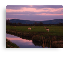 Evening following the setting sun Canvas Print