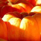 Morning Pumpkins by Bob Shupe