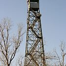 Tower in Jefferson, Texas by Susan Russell