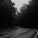 Country road by Lois Romer