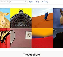 The Color of Life - 9 January 2011 by The RedBubble Homepage