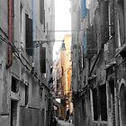 Venetian Oligochrome by StapleDesigns