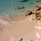 Beach, Long Island, Bahamas by Shane Pinder