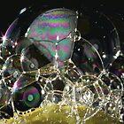 Dish Washing Bubbles by Lynn  Gibbons