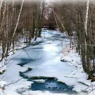 Winter Stream in Alton by Monica M. Scanlan