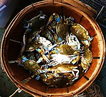Blue Crabs. by aleininger