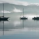 Cowichan Bay, Van. Is. BC, Canada  by Heather Wade