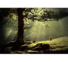 Early Morning Borrowdale In The English Lakedistrict Photographic Print