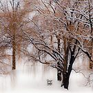 Winter Waits for You by Mary Ann Reilly