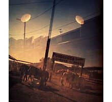 Dual Attack Photographic Print