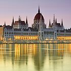 The Hungarian Parliament by ammit