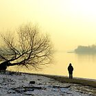 winter Danube.river.bank.with.lone.tree.and.figure_Hungary.Europe.Jan.2011 by ambrusz