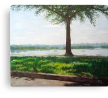Summer day on the riverside Canvas Print