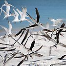 Frantic Flight  by Barry Goble