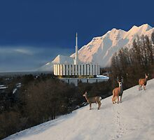 Winter Guests at the Provo Temple 20x30 by Ken Fortie