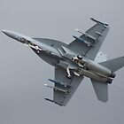 Super Hornet Underbelly by Bairdzpics