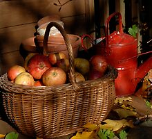 Autumn fruits. by sandyprints
