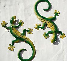 Lizards on Wall, Lanzarote by physiognomic