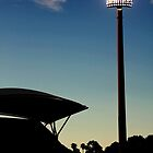 night at the cricket. by Daniel Tretola