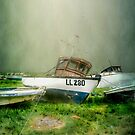 The LL280 by Tarrby