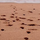 Footprints by JadePhoto