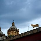 Dog and Church in Sky by Maria del Rio