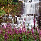 Chittenango Falls by Oscar Gutierrez