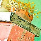 bachelor buttons, gooramadda, rutherglen by Georgina James
