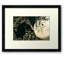 parasol, gooramadda, rutherglen Framed Print