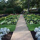 Sulken Garden Pathway by kkphoto1