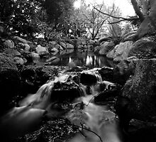 Simply a Brook by Photo-Bob